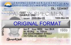 British Columbia DRIVER LICENSE ORIGINAL FORMAT, DESIGN SPECIFICATIONS, NOVELTY SECURITY CARD PROFILES, IDENTITY, NEW SOFTWARE ID SOFTWARE