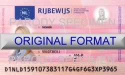 novelty id, novelty id card, driver license novelty DUTCH card, new identity software design custom