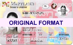 Maryland DRIVER LICENSE ORIGINAL FORMAT, DESIGN SPECIFICATIONS, NOVELTY SECURITY CARD PROFILES, IDENTITY, NEW SOFTWARE ID SOFTWARE Maryland driver