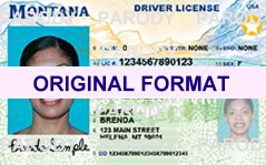 montana fake id cards, scannable with hreal hologram