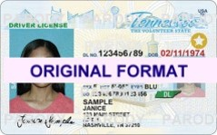 TENNESSEE DRIVER LICENSE ORIGINAL FORMAT, DESIGN SPECIFICATIONS, NOVELTY SECURITY CARD PROFILES, IDENTITY, NEW SOFTWARE ID SOFTWARE